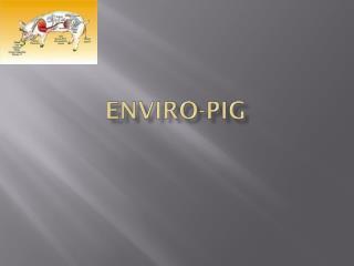 Enviro-Pig