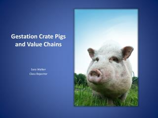 Gestation Crate  P igs and Value Chains