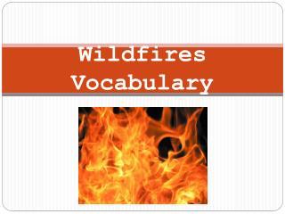 Wildfires Vocabulary