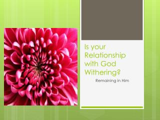 Is your Relationship with God Withering?