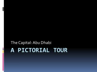 A Pictorial Tour