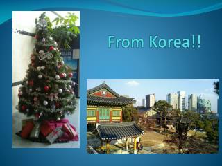 From Korea!!