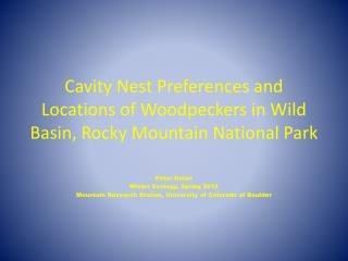 Cavity Nest Preferences and Locations of  Woodpeckers in Wild Basin, Rocky Mountain National Park