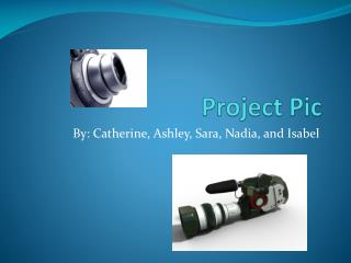 Project Pic