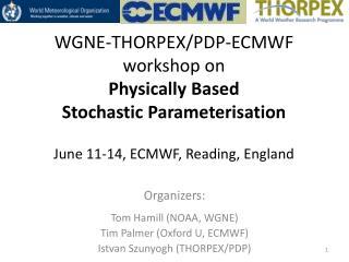 O rganizers: Tom Hamill (NOAA, WGNE) Tim Palmer (Oxford U, ECMWF) Istvan  Szunyogh (THORPEX/PDP)