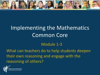 Implementing the Mathematics Common Core