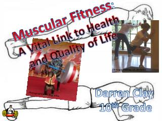 Muscular Fitness : A Vital Link to Health  and Quality of Life