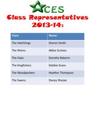 Class Representatives 2013-14: