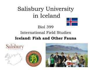 Salisbury University  in Iceland