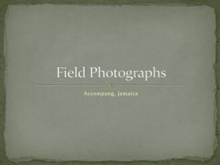 Field Photographs