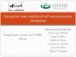 Tuning the hole mobility in  InP  semiconductor  nanowires
