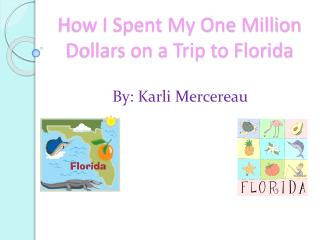 How I Spent My One Million Dollars on a Trip to Florida