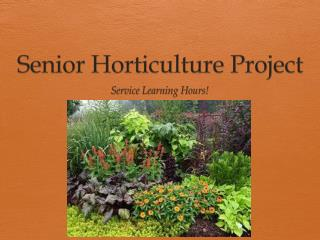 Senior Horticulture Project
