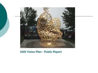 2025 Vision Plan - Public  Report