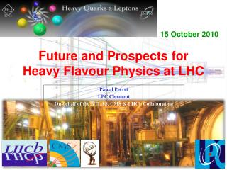 Future and Prospects for Heavy  Flavour  Physics at LHC