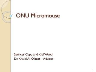 ONU Micromouse