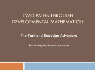 Two Paths Through Developmental Mathematics?