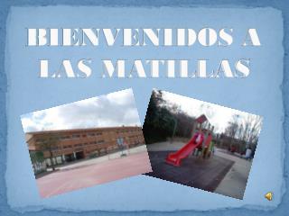 BIENVENIDOS A LAS MATILLAS