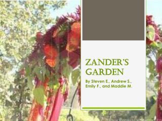 Zander's Garden