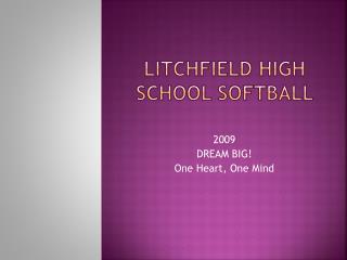 Litchfield High School Softball