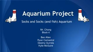 Aquarium Project