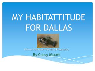 MY HABITATTITUDE FOR DALLAS