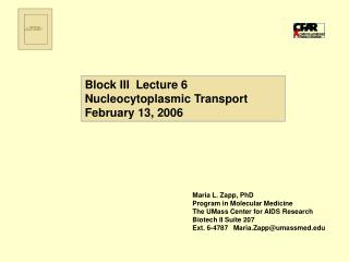 Block III  Lecture 6 Nucleocytoplasmic Transport February 13, 2006