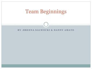 Team Beginnings