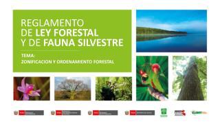 REGLAMENTO DE  LEY FORESTAL Y DE  FAUNA SILVESTRE