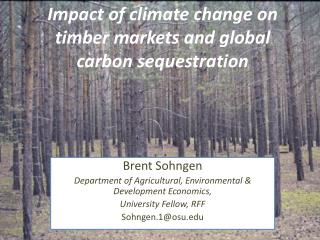 Impact of climate change on timber markets and global carbon sequestration