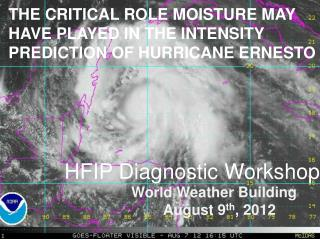 HFIP  Diagnostic Workshop