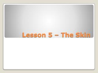 Lesson 5 – The Skin