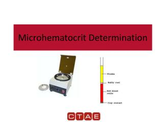 Microhematocrit Determination