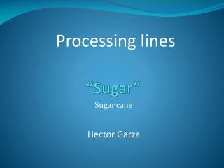 """""""Sugar"""""""