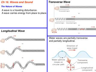Ch 16. Waves  and Sound