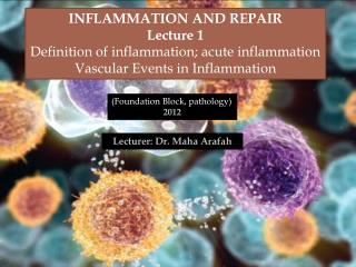 Inflammation and Repair