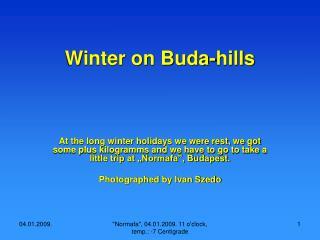 Winter on Buda-hills