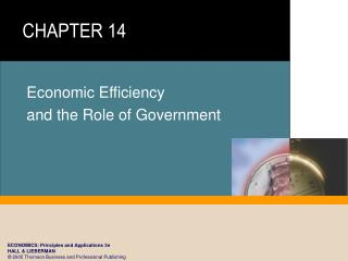Economic Efficiency and the Role of Government