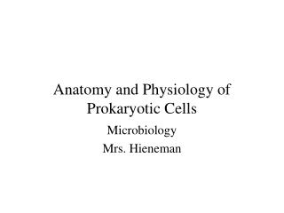 Anatomy and Physiology of Prokaryotic Cells
