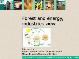 Forest and energy,                 industries view