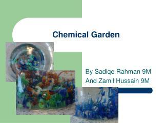 Chemical Garden