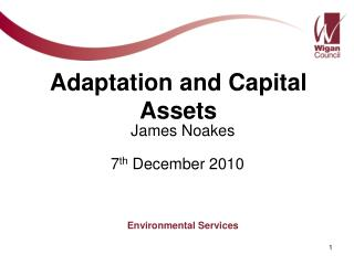 Adaptation and Capital Assets
