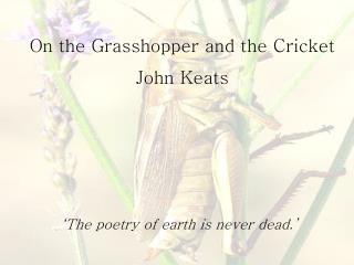 On the Grasshopper and the Cricket John Keats