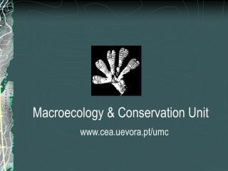 Macroecology & Conservation Unit cea.uevora.pt/umc
