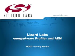 Lizard Labs energyAware  Profiler and AEM