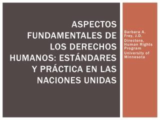 ASPECTOS FUNDAMENTALES DE LOS DERECHOS HUMANOS: ESTÁNDARES Y PRÁCTICA EN LAS NACIONES UNIDAS