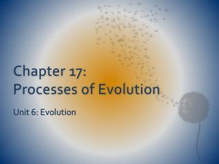 Chapter 17:  Processes of Evolution