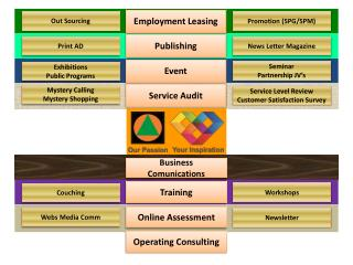 Operating Consulting