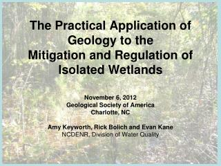 The Practical Application of Geology to the  Mitigation and Regulation of  Isolated Wetlands