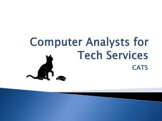 Computer Analysts for Tech Services